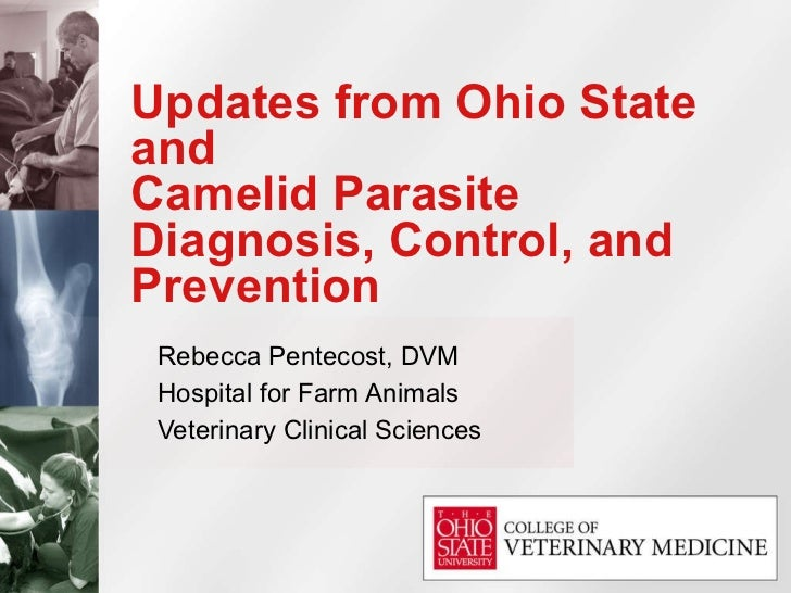 Updates from Ohio State and  Camelid Parasite Diagnosis, Control, and Prevention Rebecca Pentecost, DVM Hospital for Farm ...