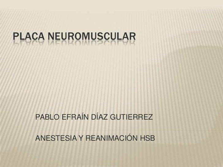 PLACA NEUROMUSCULAR   PABLO EFRAÍN DÍAZ GUTIERREZ   ANESTESIA Y REANIMACIÓN HSB