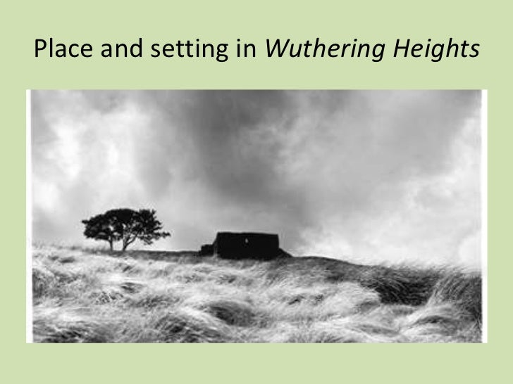 Wuthering heights critical essay