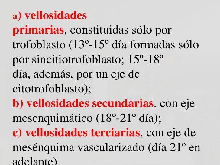 a) vellosidadesprimarias, constituidas sólo portrofoblasto (13º-15º día formadas sólopor sincitiotrofoblasto; 15º-18ºdía, ...