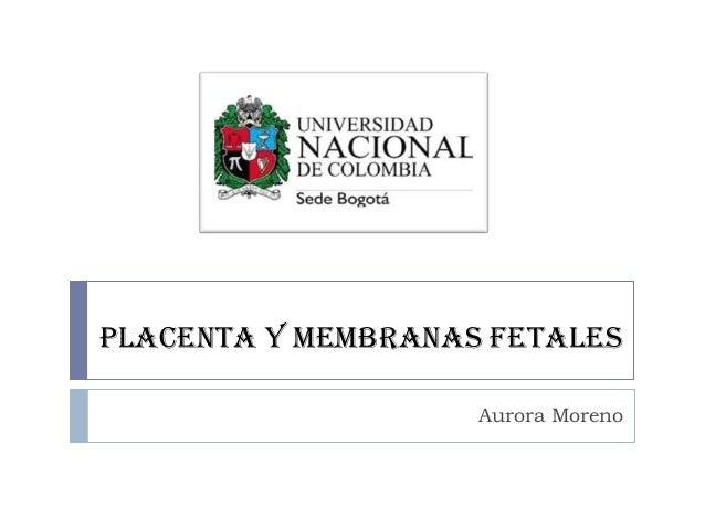 PLACENTA Y MEMBRANAS FETALES Aurora Moreno