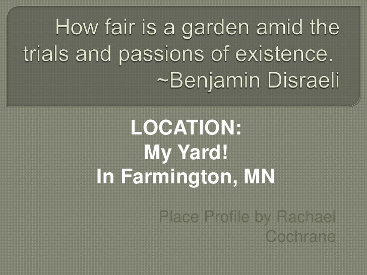 How fair is a garden amid the trials and passions of existence.~Benjamin Disraeli<br />LOCATION:<br />My Yard!<br />In F...