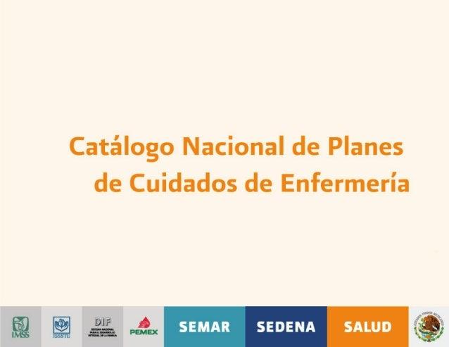 Catálogo Nacional de Planes de Cuidados de Enfermería