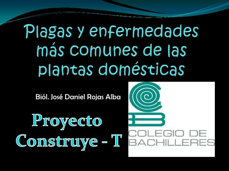 Biól. José Daniel Rojas Alba