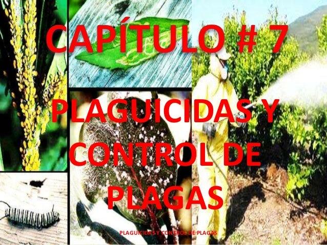 PLAGUICIDAS Y CONTROL DE PLAGAS PLAGUICIDAS Y CONTROL DE PLAGAS