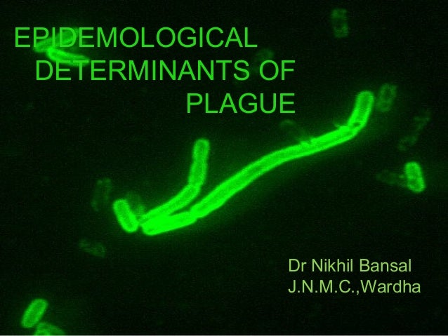 EPIDEMOLOGICAL DETERMINANTS OF         PLAGUE               Dr Nikhil Bansal               J.N.M.C.,Wardha