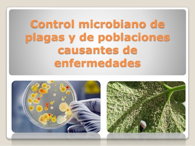 Control microbiano de plagas for Control de plagas badajoz