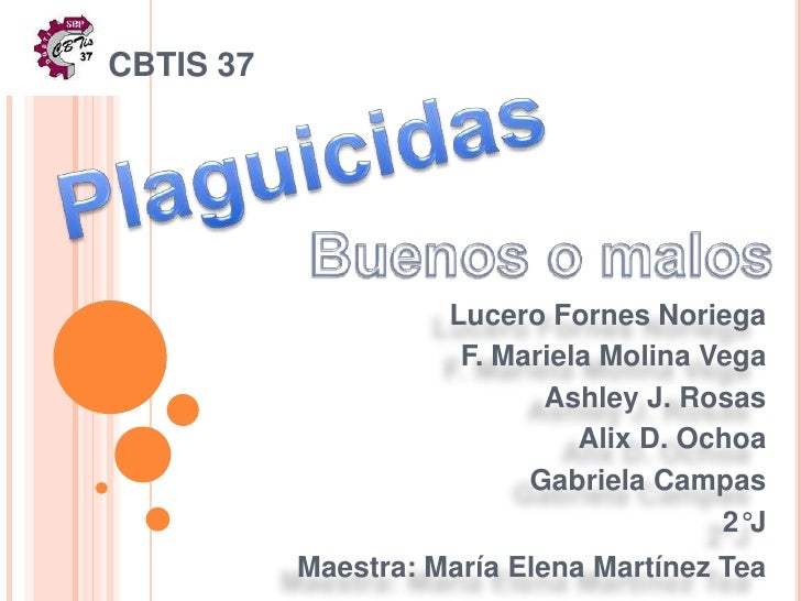 CBTIS 37 <br />Plaguicidas<br />Lucero Fornes Noriega <br />F. Mariela Molina Vega<br />Ashley J. Rosas <br />AlixD. Ochoa...