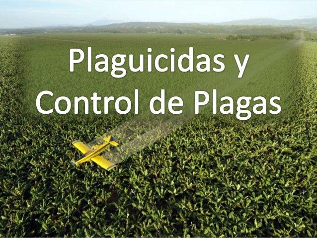 Plaguicidas Los plaguicidas se conocen también como biocidas, el hombre los ha usado desde hace mucho tiempo para combatir...