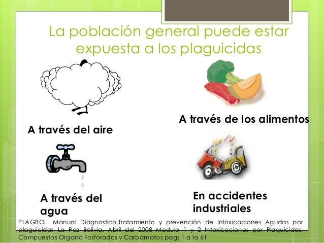 La población general puede estar expuesta a los plaguicidas  A través del aire  A través del agua  A través de los aliment...
