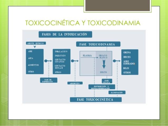 TOXICOCINÉTICA Y TOXICODINAMIA