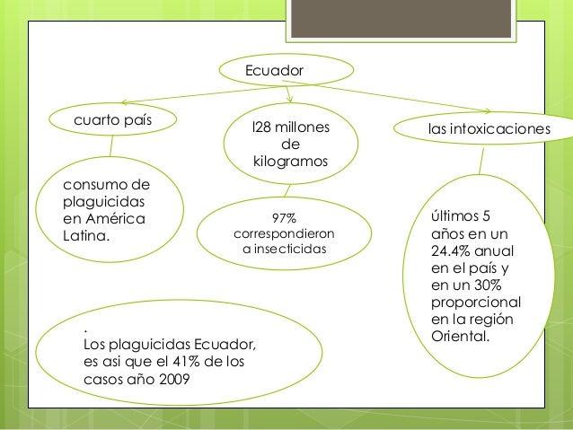 Ecuador cuarto país  consumo de plaguicidas en América Latina.  l28 millones de kilogramos  97% correspondieron a insectic...