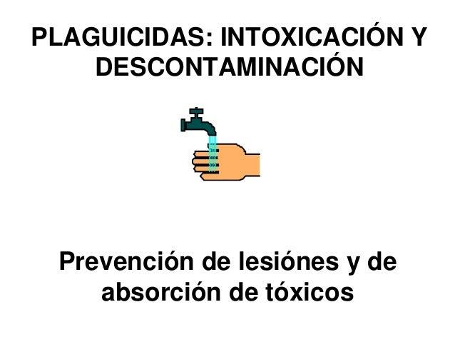 PLAGUICIDAS: INTOXICACIÓN Y DESCONTAMINACIÓN Prevención de lesiónes y de absorción de tóxicos