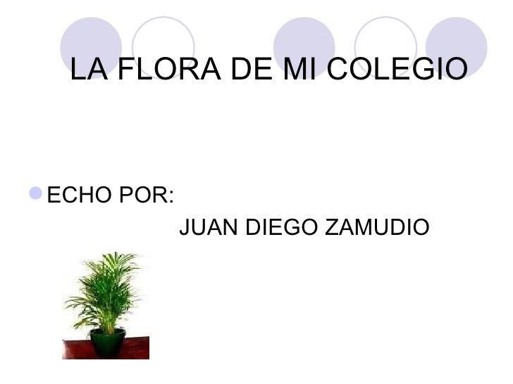 LA FLORA DE MI COLEGIO <ul><li>ECHO POR: </li></ul><ul><li>JUAN DIEGO ZAMUDIO </li></ul>
