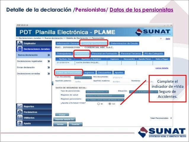 Detalle de la declaración /Pensionistas/ Ingresos. Ingrese montos devengados y pagados.