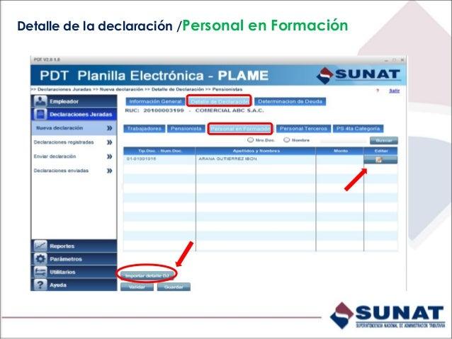 Detalle de la declaración /Personal en Formación/Datos del Personal en Formación Ingrese el monto pagado de la subvención ...