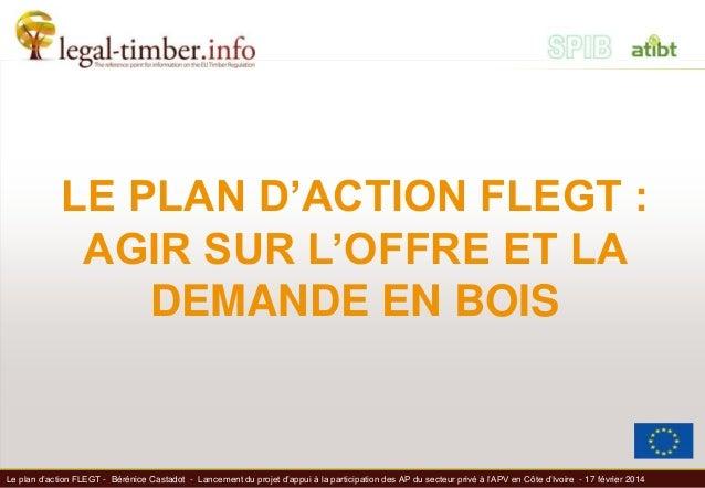 Le plan d'action FLEGT - Bérénice Castadot - Lancement du projet d'appui à la participation des AP du secteur privé à l'AP...