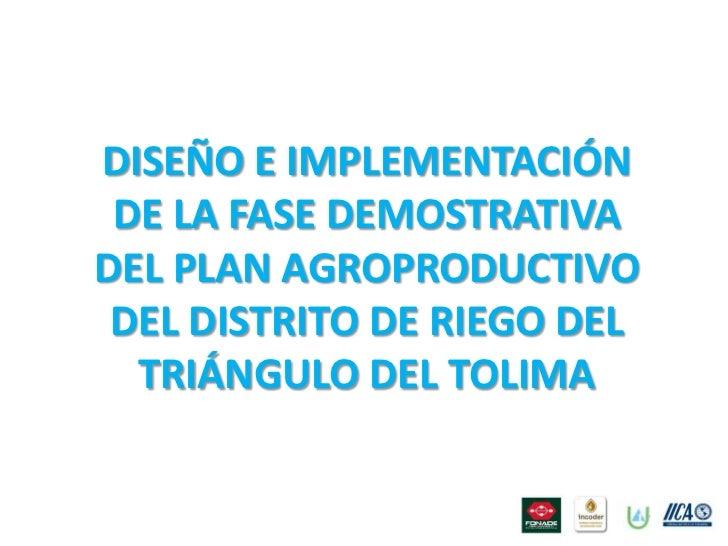 Plan agroproductivo iica-febrero 2011