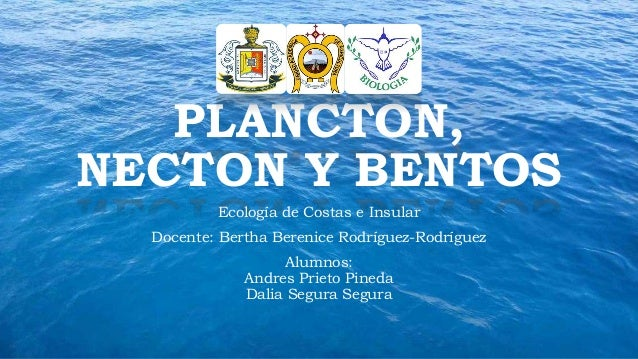 PLANCTON,  NECTON Y BENTOS  Ecología de Costas e Insular  Docente: Bertha Berenice Rodríguez-Rodríguez  Alumnos:  Andres P...