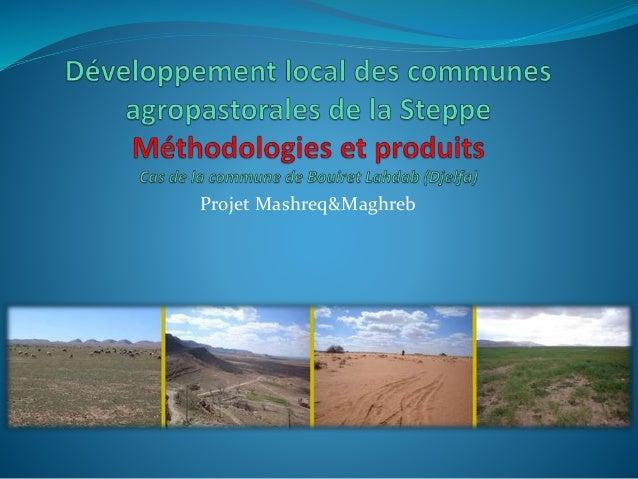 Projet Mashreq&Maghreb