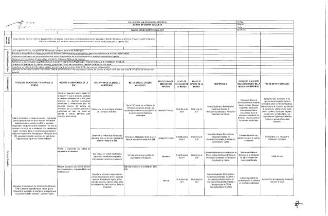 Plan de Acción Institucional  2017