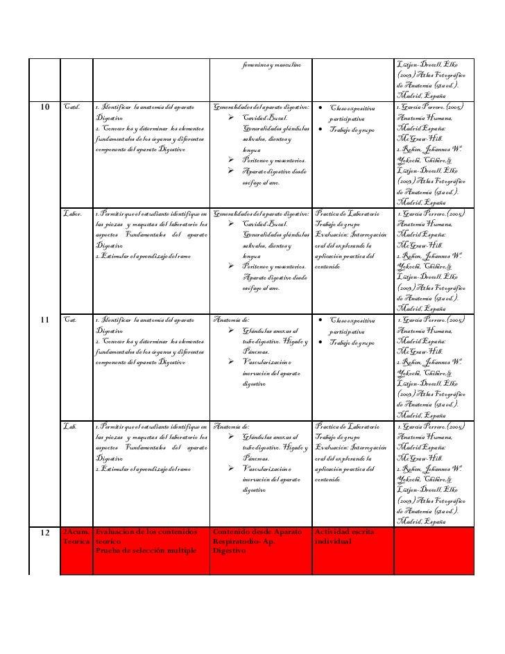 Plan de actividades anatomia universidad del mar