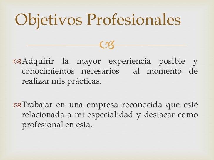 Curriculum Vitae Objetivos Profesionales