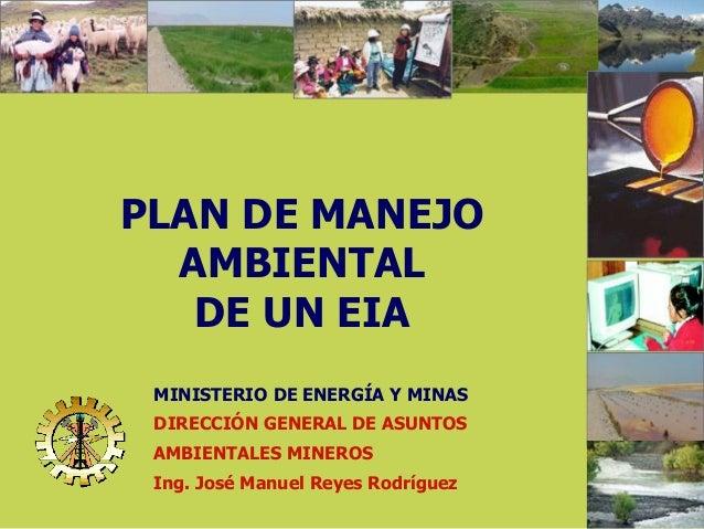 1 PLAN DE MANEJO AMBIENTAL DE UN EIA MINISTERIO DE ENERGÍA Y MINAS DIRECCIÓN GENERAL DE ASUNTOS AMBIENTALES MINEROS Ing. J...
