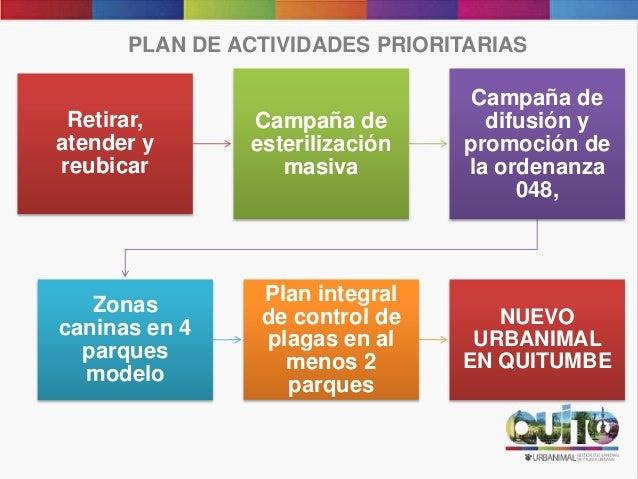PLAN DE ACTIVIDADES PRIORITARIAS Retirar, atender y reubicar Campaña de esterilización masiva Campaña de difusión y promoc...