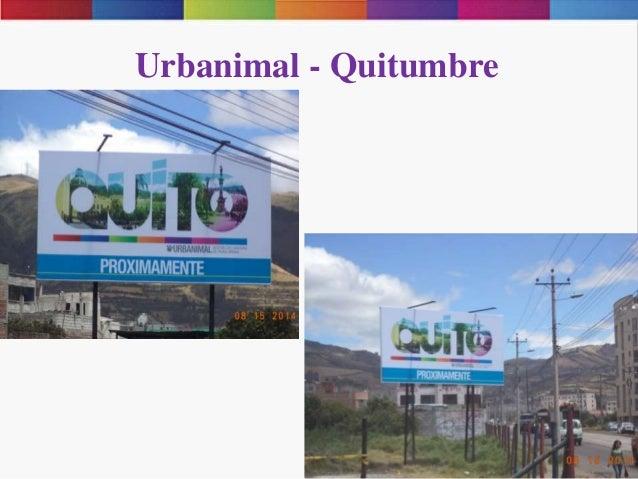 Urbanimal - Quitumbre