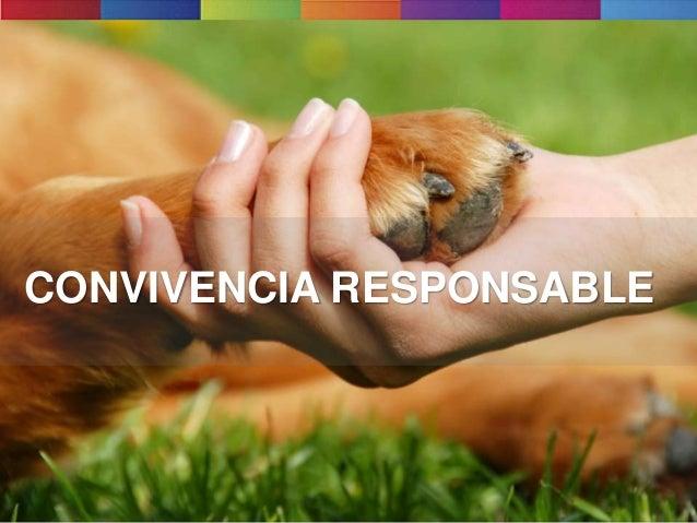 CONVIVENCIA RESPONSABLE