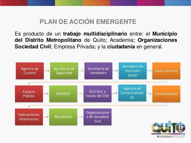 PLAN DE ACCIÓN EMERGENTE Es producto de un trabajo multidisciplinario entre: el Municipio del Distrito Metropolitano de Qu...