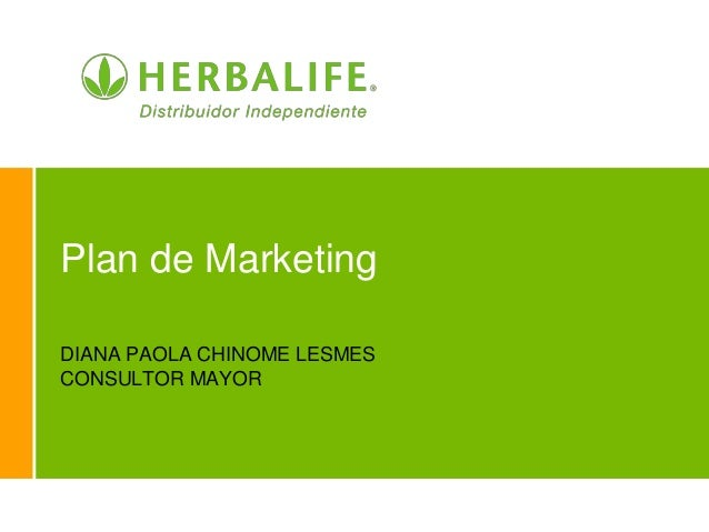 Plan de Marketing DIANA PAOLA CHINOME LESMES CONSULTOR MAYOR
