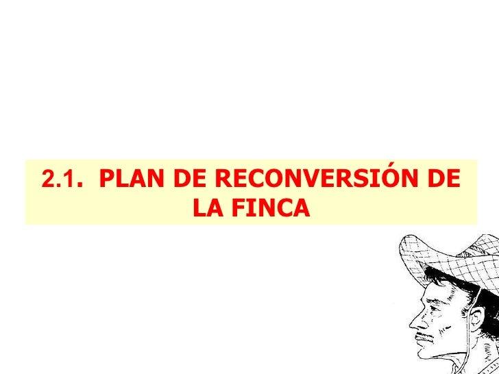 2.1 .  PLAN DE RECONVERSIÓN DE LA FINCA