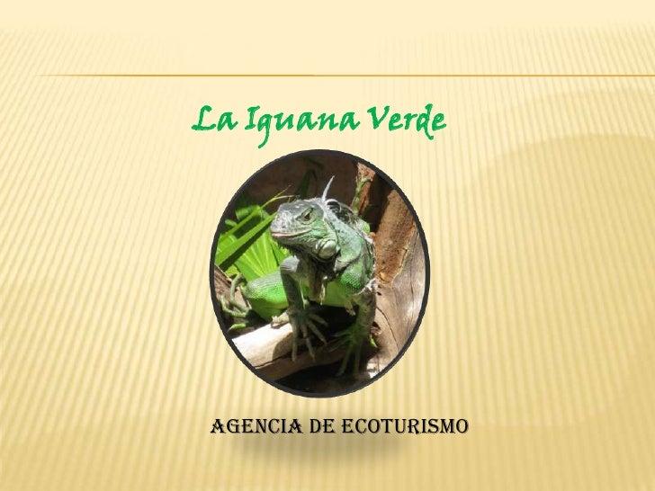 La Iguana Verde <br />Agencia de EcoTurismo<br />