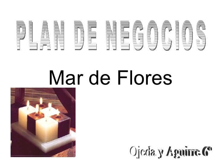 PLAN DE NEGOCIOS Mar de Flores  Ojeda y Aguirre 6º
