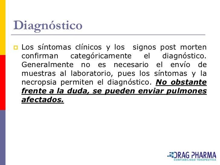 Diagnóstico    Los síntomas clínicos y los signos post morten     confirman    categóricamente    el   diagnóstico.     G...