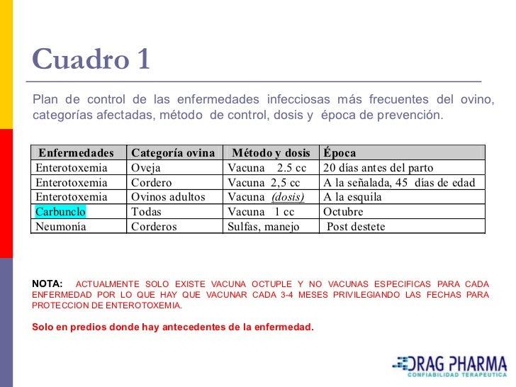 Cuadro 1 Plan de control de las enfermedades infecciosas más frecuentes del ovino, categorías afectadas, método de control...