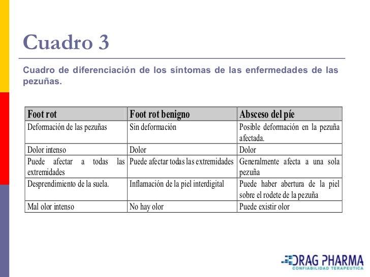 Cuadro 3 Cuadro de diferenciación de los síntomas de las enfermedades de las pezuñas.    Foot rot                       Fo...