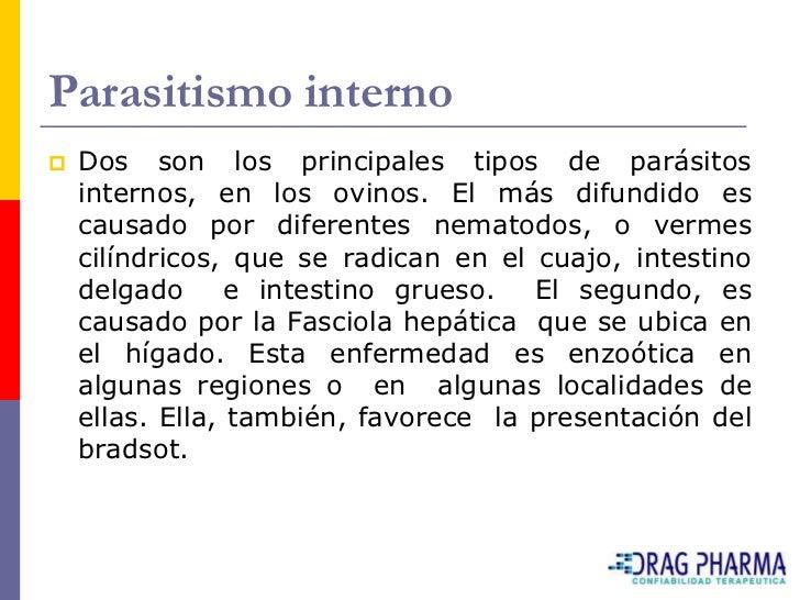Parasitismo interno    Dos son los principales tipos de parásitos     internos, en los ovinos. El más difundido es     ca...