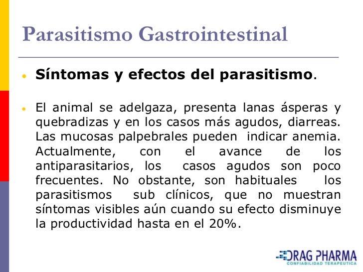 Parasitismo Gastrointestinal  Síntomas y efectos del parasitismo.   El animal se adelgaza, presenta lanas ásperas y  quebr...
