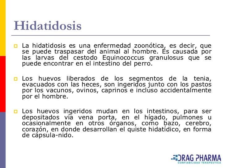 Hidatidosis    La hidatidosis es una enfermedad zoonótica, es decir, que     se puede traspasar del animal al hombre. Es ...