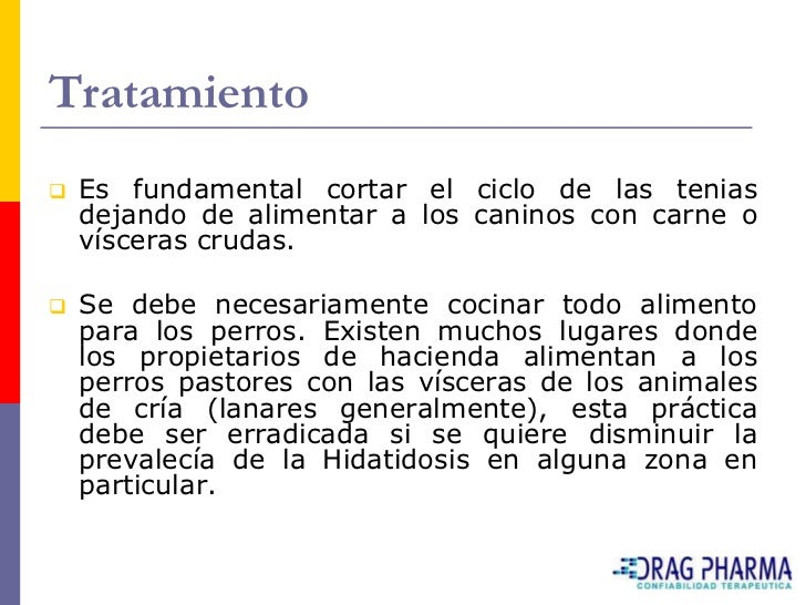 Tratamiento    Otro punto funadmental es la utilización de drogas     cuyo espectro abarque al género Echinococcus.     D...