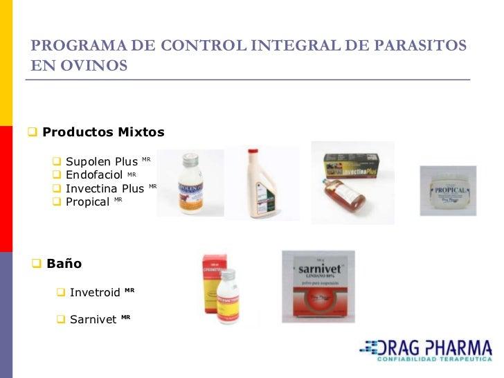 Enfermedades Metabólicas    Toxemia de la gestación o enfermedad de las     melliceras.     Se produce por una alimentac...