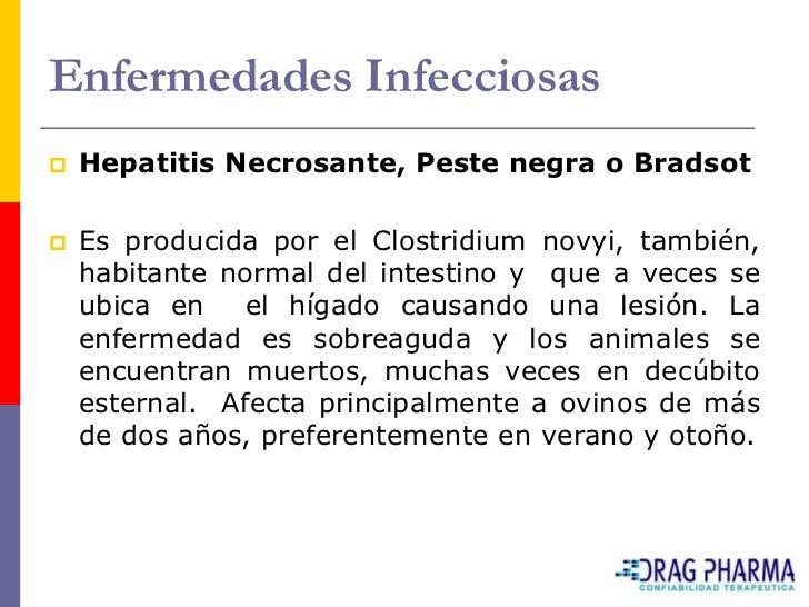Enfermedades Infecciosas    Hepatitis Necrosante, Peste negra o Bradsot     Es producida por el Clostridium novyi, tambi...