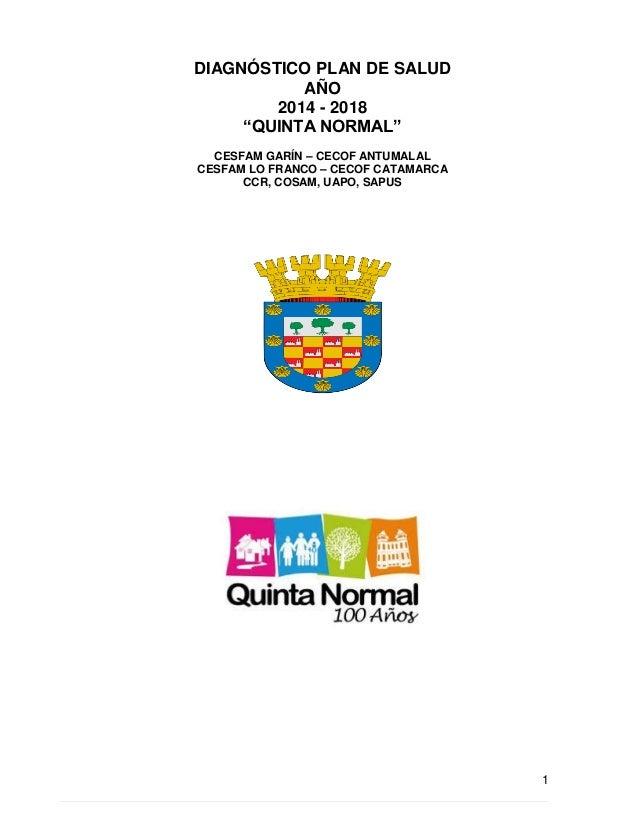 """1  DIAGNÓSTICO PLAN DE SALUD  AÑO  2014 - 2018  """"QUINTA NORMAL""""  CESFAM GARÍN – CECOF ANTUMALAL  CESFAM LO FRANCO – CECOF ..."""