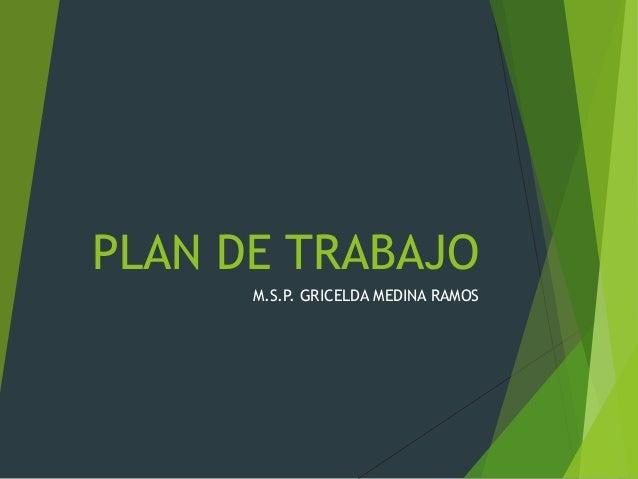 PLAN DE TRABAJO M.S.P. GRICELDA MEDINA RAMOS