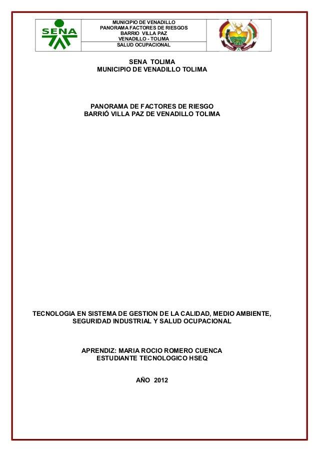 MUNICIPIO DE VENADILLO PANORAMA FACTORES DE RIESGOS BARRIO VILLA PAZ VENADILLO - TOLIMA SALUD OCUPACIONAL  SENA TOLIMA MUN...