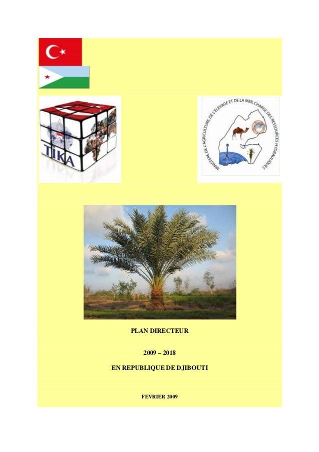 PLAN DIRECTEUR 2009 – 2018 EN REPUBLIQUE DE DJIBOUTI FEVRIER 2009