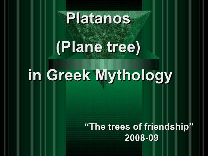 "Platanos  (Plane tree)  in Greek Mythology "" The trees of friendship""  2008-09"
